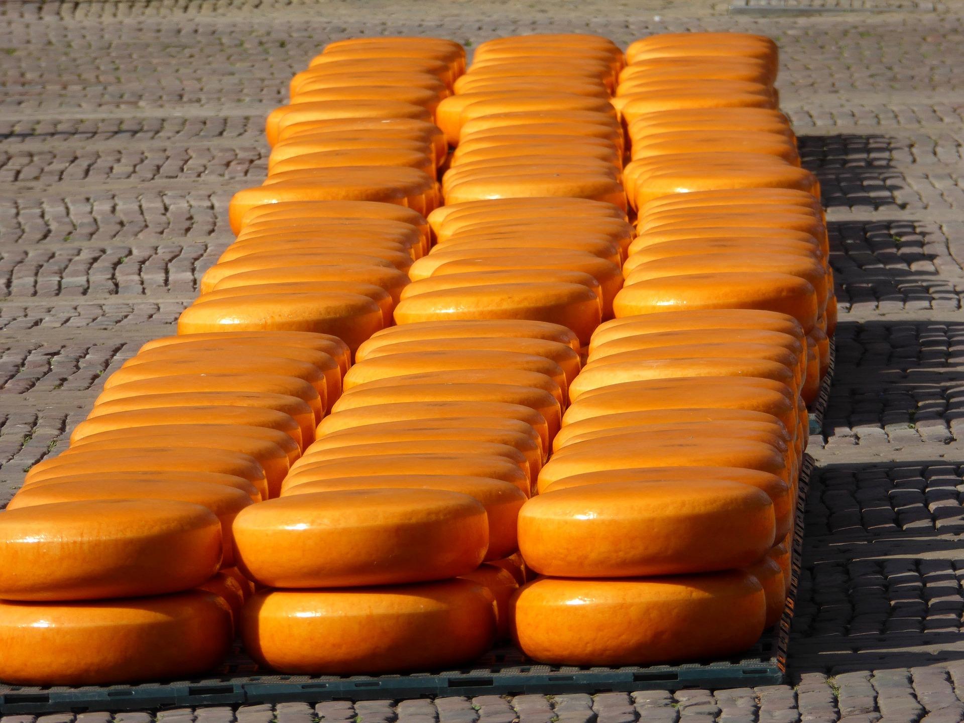 Targ serów w mieście Gouda